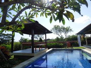 Spacious 2 BR Villa in Canggu with ricepaddy-view