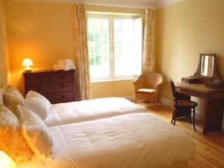 The Yellow Bedroom - light and airy twin room, Jurancon