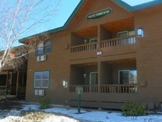 Deer Park 2 Bedroom with free shuttle to Loon Mountain!, Woodstock