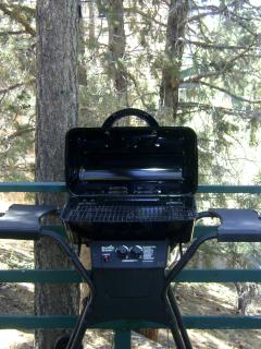 New gas BBQ- gas is provided.