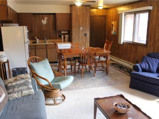 Located at Base of Powderhorn Mtn in the Western Upper Peninsula, A Quadruplex Home Across the Street From the Main Ski Lodge, Ironwood