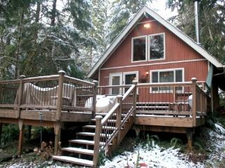 CR103lMapleFalls  - #90 Cozy up by the fire in this pet friendly cabin!, Glacier