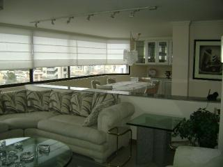 Large, centrally  located apt. with great views, Quito