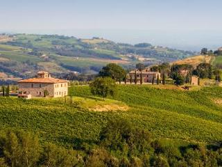 Fabulous Villa Barbi offers complimentary master class in wine, pool & daily cleaning, Orvieto