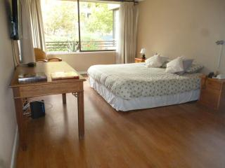 180m2 Beautyful and spacious Las Condes appartment, Santiago