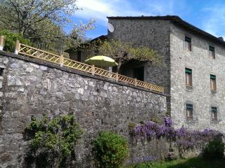 L'OLIVO - Garden and colored countryside house, Pescaglia