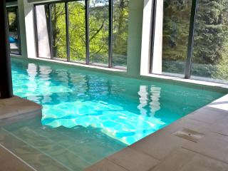Indoor Pool and Jacuzzi to enjoy life, Turin