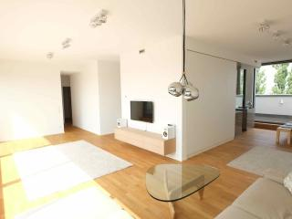 Light flooded modern Penthouse in central location, Berlin