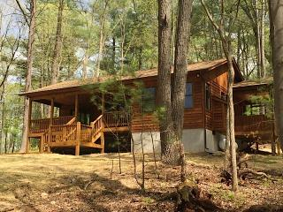 Spectacular 1 Bedroom Cabin Nestled in the Pines w/ Hot Tub, Rileyville