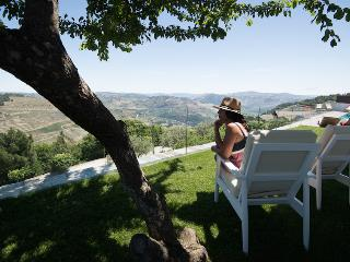Luxury Holiday Villa with Pool Sleeps 8-11 in Douro Valley, Covas do Douro
