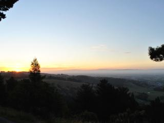 Picturesque Stay in Chch, Christchurch