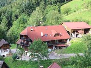Vacation Apartment in Bad Peterstal-Griesbach - up to 5 persons. (# 7484)