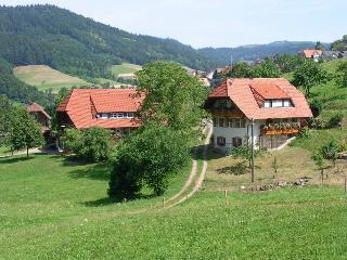 Vacation Apartment in Nordrach - 915 sqft, 2 bedrooms, max. 4 People (# 7693)