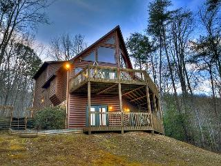 Elk Horn Lodge nestled among huge mtn laurels w/ breathtaking mtn views, Blue Ridge