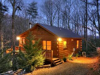 Four Season's Cabin Rental is THE PERFECT Mountain Getaway, Blue Ridge