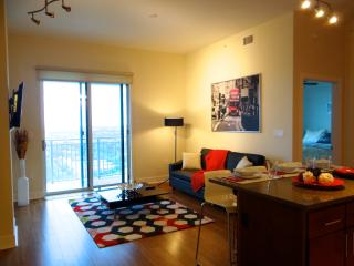 Super Luxury and Secured Apartment up to Four Peo, South Houston