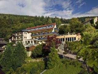 Guest Room in Bad Wildbad -  (# 7737)