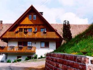 Vacation Apartment in Bad Rippoldsau-Schapbach - 969 sqft, 2 bedrooms, max. 5 people (# 7746)