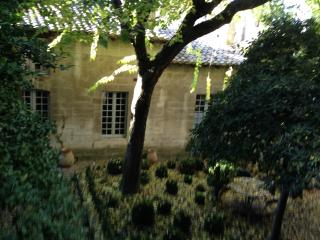 Luxurious duplex across  Palace of the Popes, Avignon