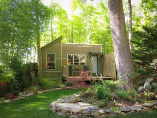 Asheville Micro House in Hidden Garden