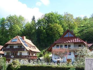 Vacation Apartment in Haslach im Kinzigtal - 441 sqft, 1 bedroom, max. 2 persons (# 7813)