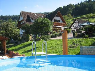 Vacation Apartment in Buehlertal -  (# 7829)