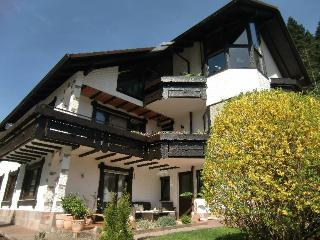 Vacation Apartment in Hornberg - 646 sqft, 1 bedroom, max. 2 persons (# 7831)