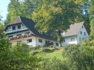 Vacation Apartment in Oberkirch (Baden) - 689 sqft, max. 5 people (# 7908)
