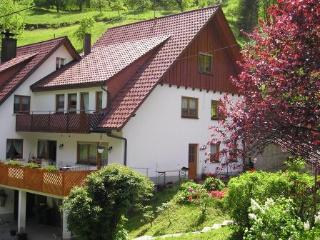 Vacation Apartment in Bad Peterstal-Griesbach -  (# 7941)