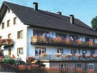 Vacation Apartment in Bad Peterstal-Griesbach - 689 sqft,  (# 8024)