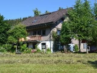 Vacation Apartment in Todtnauberg - 484 sqft, 1 to 2 persons (# 8030)