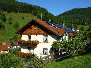 Vacation Apartment in Wolfach - 861 sqft, 3 bedrooms, max. 6 persons (# 8052)