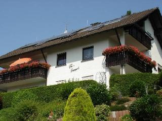Vacation Apartment in Zell am Harmersbach - 2 Bedrooms (# 8060)