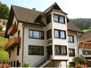 Vacation Apartment in Bad Peterstal-Griesbach - 861 sqft, 2 bedrooms, max. 4 people (# 8065)
