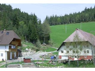 Vacation Apartment in Hornberg - 1 bedroom, max. 3 people (# 8111)