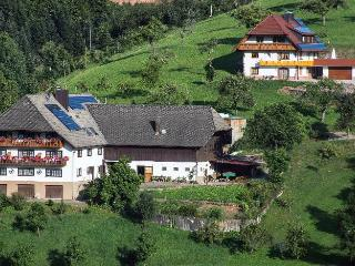 Vacation Apartment in Oberharmersbach -  (# 8200)