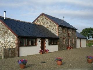 Blackberry Barn - Villavin Farm Cottages, Holsworthy