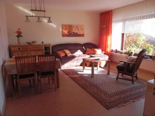 Vacation Apartment in Medebach - 538 sqft, comfortable, friendly, quiet (# 7353)