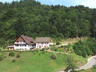 Vacation Apartment in Oppenau - 1076 sqft, 2-5 Pers. (# 7589)