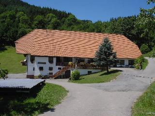 Vacation Apartment in Hausach - 700 sqft, 2 bedrooms, max. 4 Pers. (# 8407)