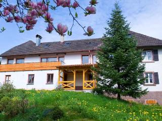 Vacation Apartment in Gengenbach -  (# 8435)
