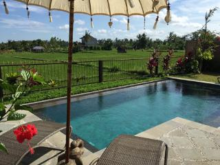 Villa Intani - private Ubud house vacation rental, Sayan