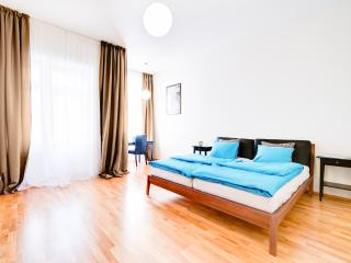 Star apartment, Brno