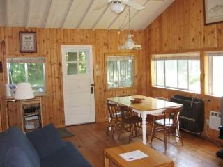 Fern Creek - Steps to Lake Michigan Sandy Beach. Historic Comfy Cottage. Weekly Stays begin on Saturday., South Haven