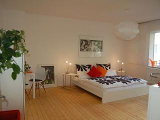 Modern apartment for 4 persons, center of Hanover, Hannover