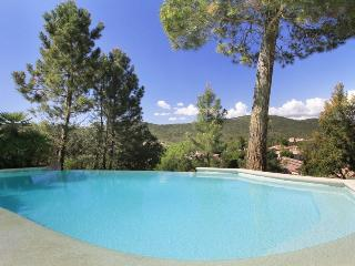 6254 2-bedroom villa with private pool, Montauroux
