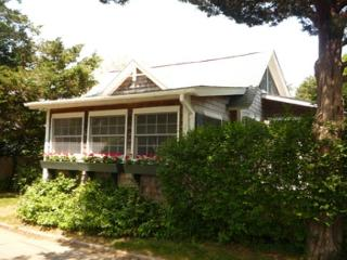 CHARMING IN-TOWN COTTAGE WITH LOVELY PATIO, Edgartown