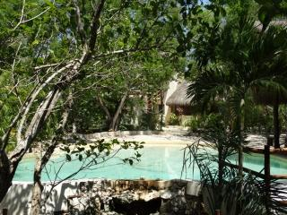 casa palapa authentic and romantic , 2 bedrooms, Chemuyil