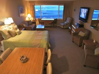 Otter Space - Spacious Beachfront Condo. Sleeps 5, Lincoln City