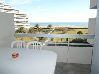 CANET PLAGE VUE MER ACCES DIRECT PLAGE. Wifi, Canet-Plage